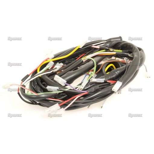 Wiring Harness S.59182